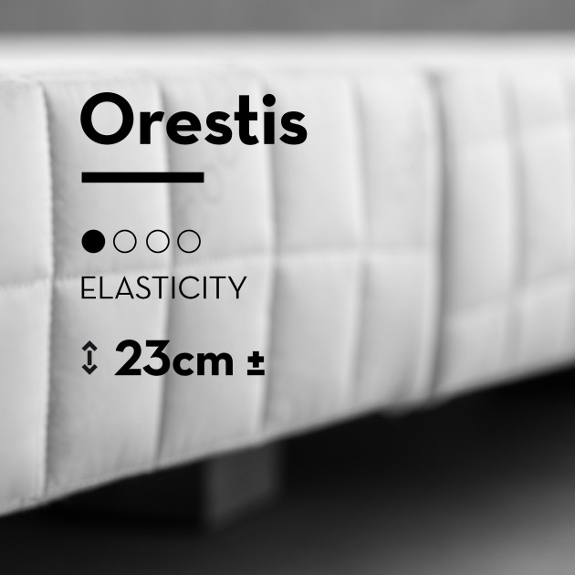 Bed base Orestis