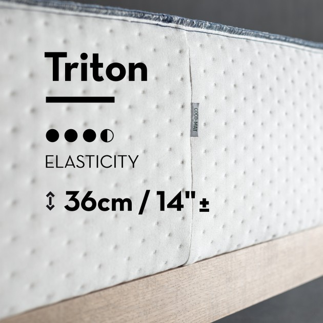 Foundation Triton