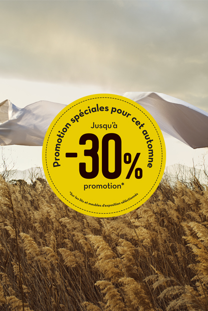 paris_30%_discount_website_news